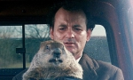 It_s_Groundhog_Day_all_over_again___.jpg